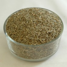 Horsetail-shavegrass Organic CS - Cut & Sifted