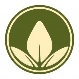 Aloe Vera Powder 200 : 1
